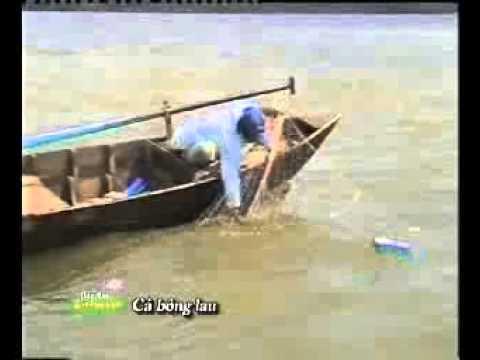 [Đặc sản miền sông nước]: Cá bông lau