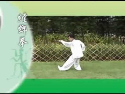 北螳螂《崩步》麥永聰師傅演練 Northern Praying Mantis Kung Fu by Shifu Edward Mak