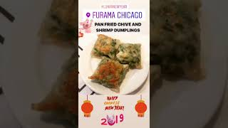 PAN FRIED CHIVE AND SHRIMP DUMPLINGS from Furama Restaurant in Chicago