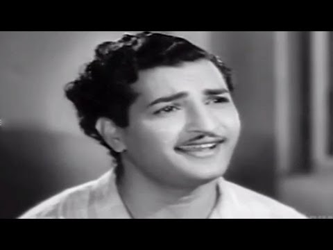 Missamma Movie || Kaavalante Istaale Video Song || Ntr, Anr, Svr, Savitri, Jamuna video