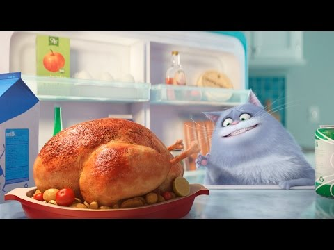 The Secret Life Of Pets ALL TRAILERS - 2016 Animation
