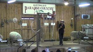 剪羊毛表演Video Part 1...Nov 2014 Sheep Shearing Show In Austrlia