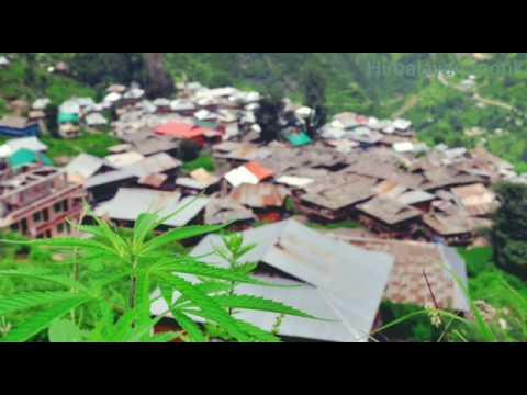 Om namah shivaya by Bob Marley.