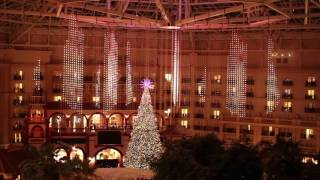 2016 A Christmas Wish Light Show - Gaylord Palms, Kissimmee, FL