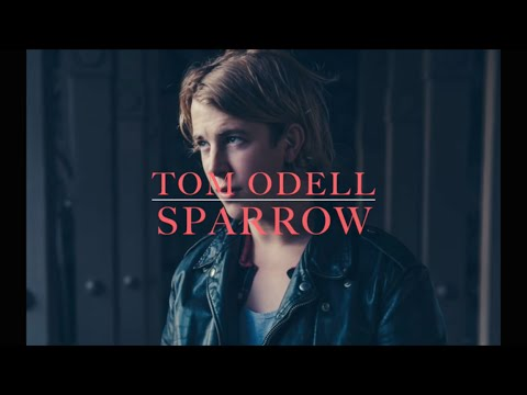Tom Odel - Sparrow (lyrics)