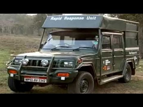 Kanha tiger reserve: The pride of Madhya Pradesh