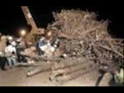 Bonfire Tribute 1999