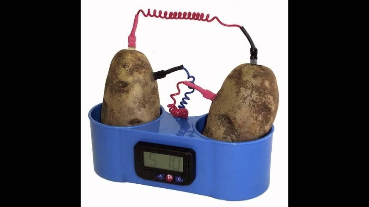 Science Project Video Science Fair Video Potatoe
