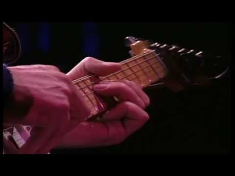 Dire Straits - Local Hero - Wild Theme LIVE (On the Night, 1993) HD