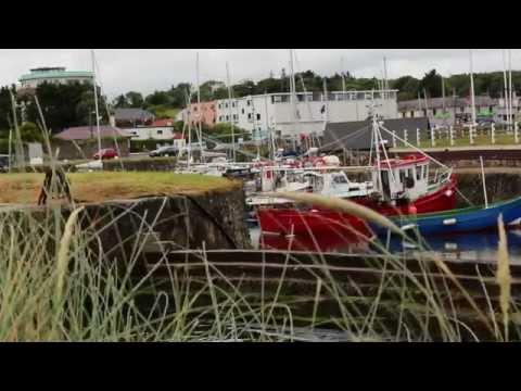 Eleanor Mcevoy - Harbour