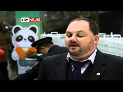 Panda Journey: Giant Couple Leave For Edinburgh