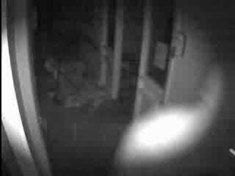 Burglars caught in the act - Delta Monitoring