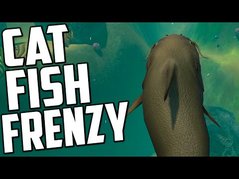 Feed And Grow Fish - CAT FISH FRENZY UPDATE (Early Access Gameplay)