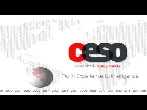 CESO Development Consultants