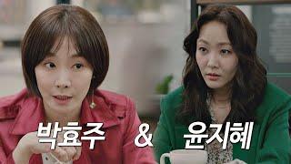 윤지혜(Yoon Ji-hye)-박효주(Park Hyo-joo), <바람이 분다>를 이끄는 황금 라인업! 〈바람이 분다(thewindblows)〉 스페셜