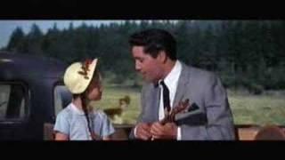 Vídeo 246 de Elvis Presley