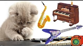 Musical Instruments for Kids – The Little Orchestra | MusicMakers with KIDS & ANIMALS - Baby Teacher