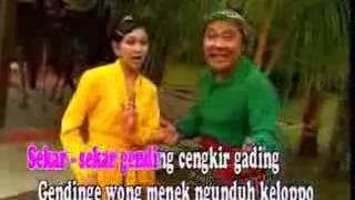 download lagu Cengkir Gading - Yuliatin - Kendang Kempul Banyuwangi gratis