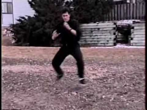 5 Forms of American KunTao Silat