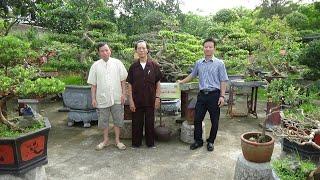 SH.1258.Bất ngờ trước tác phẩm Sanh song siêu vườn cảnh.Nguyễn kim Sơn. Phố Và. TP Bắc ninh