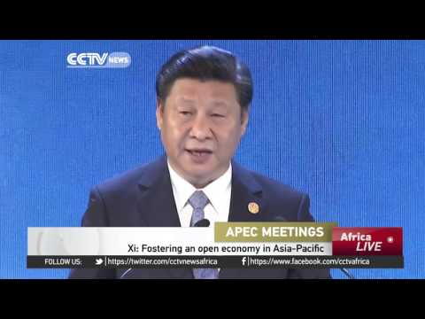 China's President  Calls For Fostering An Open Economy In Asia-Pacific