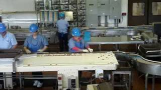 Mauna Loa Macadamia Nut Factory - Video 3
