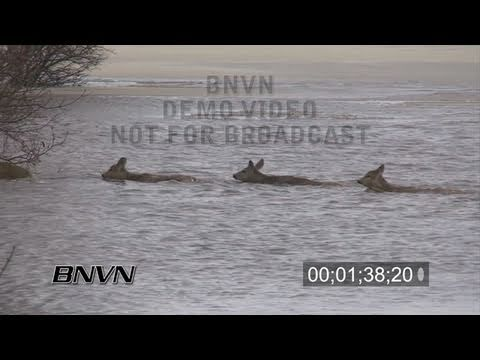 3/25/2009 Oxbow, North Dakota Flooding - Part 2 stock video