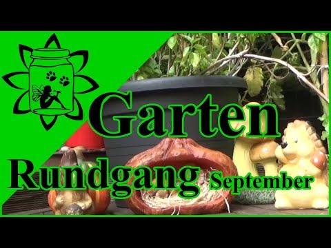 Gartenrundgang September 2018 | Rundgang durch meinen Gemüse Garten