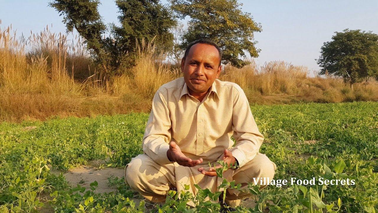 Cabbage Matar Recipe | Bandh Gobhi Matar Recipe by Mubashir Saddique | Village Food Secrets