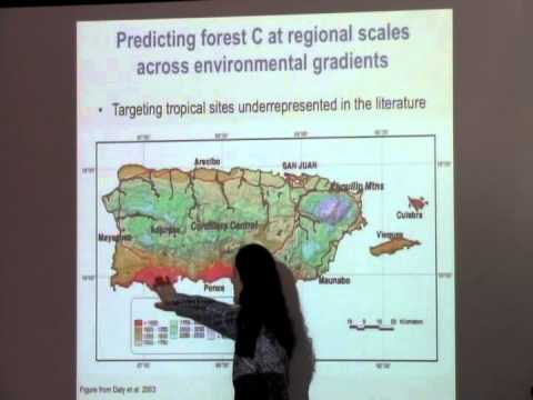 Farms to Forests: Challenges & Opportunities in Post-Agricultural Landscapes in the Caribbean Part 2