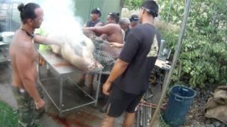 Hokulea Crew Imu In Waianae Part 3 Of 3