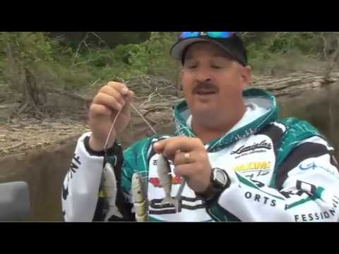 Fishing-the-Alabama-Rig-with-Bill-Siemantel BBZ Style