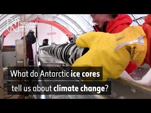 Studying ice cores in Antartica | Natural History Museum