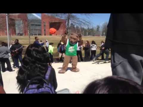 Georgia Gwinnett college bear Harlem shake part 2