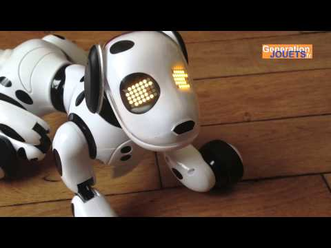Zoomer charging problem fix won t charge robot dog doesn t turn on