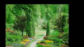Watch Elvis Presley In The Garden video