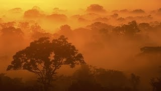 Brainwave Sunrise Meditation Orange Yellow Beta 13 Hz In C