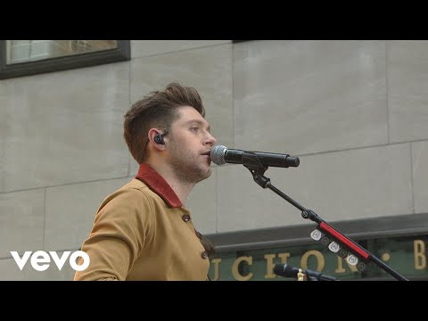 Download Lagu Niall Horan - Too Much To Ask MP3 Free