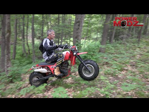 Honda PowerCat 200X and 250SX trike scouting the bush in the summer!