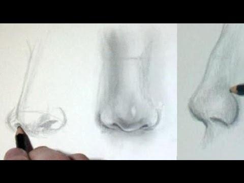 comment dessiner des nez