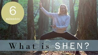 What is Shen in Traditional Chinese Medicine?