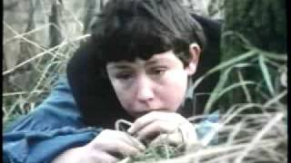 Brady's Escape ~ (1984) ~ with Kelly Reno ~ 8 / 11
