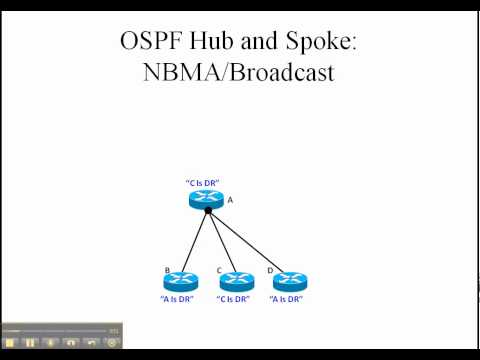 ospf-example.cpp