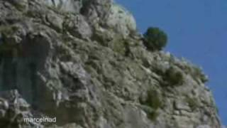 golden-eagle-drags-goats-off-cliff