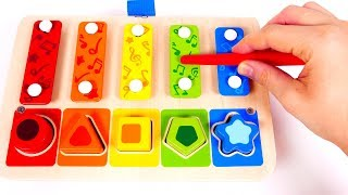 Learn Colors with Xylophone Toy | Learn with Yippee Toys