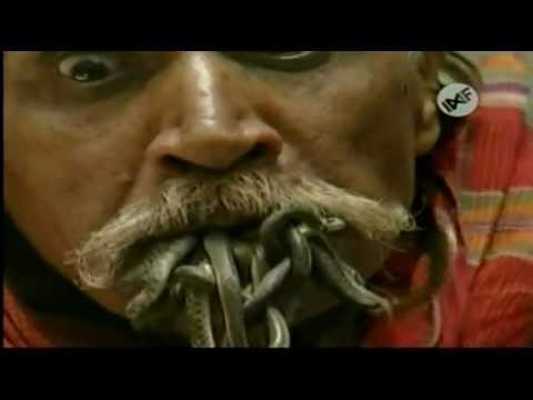 11 hombre come serpientes vivas los encuentros con animales m s tontos del mundo youtube - Animales con personas apareandose ...