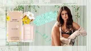 Download Lagu Vlog: ¿Que Perfume Usan los Famosos? #2 Selena Gomez 👑 Gratis STAFABAND