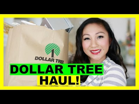 DOLLAR TREE HAUL! #8