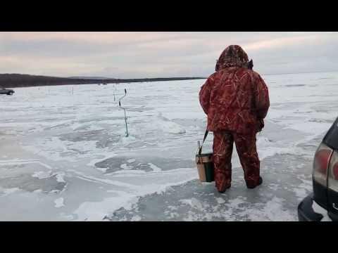 видео рыбалка на реке золотица