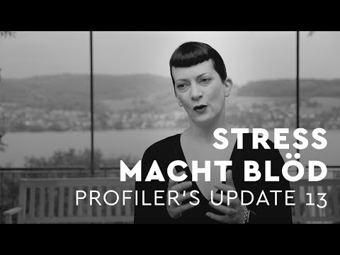 Stress macht blöd - Profiler's Update 13